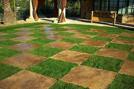 Unique Sod Lawn Landscaping Ideas