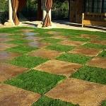 Unique Sod Lawn Landscaping Ideas