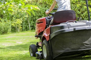 Arizona sod lawn care tips for spring