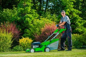 Smiling Professional Gardener handles the most common lawncare mistakes in Arizona